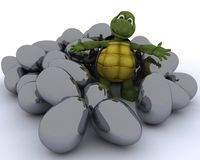 Tortoise with easter eggs Royalty Free Stock Images