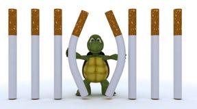 Tortoise escaping cigarette prison. 3D render of a tortoise escaping cigarette prison Royalty Free Stock Image