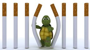 Tortoise escaping cigarette prison Stock Image