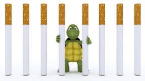 Tortoise Escaping Cigarette Prison Royalty Free Stock Photos