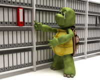 Tortoise filing documents Royalty Free Stock Image