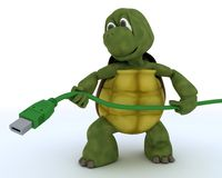 Tortoise with a firewire cable Stock Images