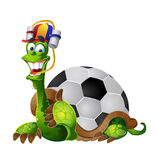 Tortoise football fan. Vector turtle football fan on white background Royalty Free Stock Photography
