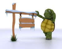 Tortoise with a frozen blank road sign Stock Photography