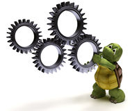 Tortoise with gears Royalty Free Stock Photo