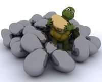 Tortoise with golden easter egg Royalty Free Stock Image