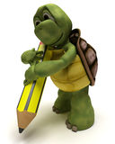Tortoise holding a pencil Royalty Free Stock Photos