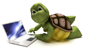 Tortoise on a laptop computer Stock Photo