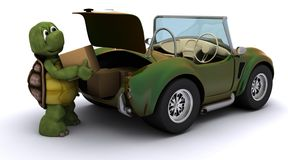 Tortoise loading boxes in  a car Royalty Free Stock Photography