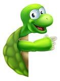 Tortoise lub żółwia Wskazywać Zdjęcia Stock