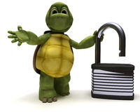 Tortoise with padlock Stock Photography