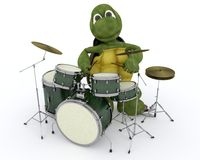 Tortoise playing the drums Royalty Free Stock Photography