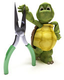 Tortoise with pliers Royalty Free Stock Images