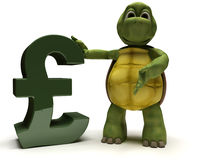 Tortoise with pound sign Royalty Free Stock Image