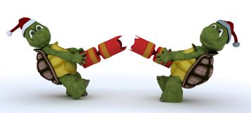 Tortoise pulling christmas cracker Royalty Free Stock Images