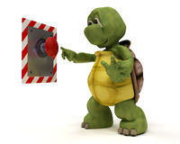 Tortoise with push button Royalty Free Stock Images