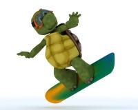 Tortoise riding a snowboard. 3D render of a tortoise riding a snowboard Stock Image