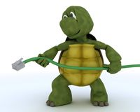 Tortoise with a RJ1 cable Stock Photo