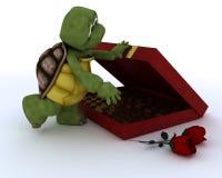 Tortoise with romantic gift Stock Photos