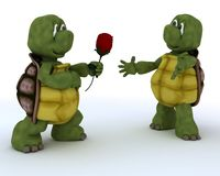 Tortoise with romantic gift Royalty Free Stock Photography