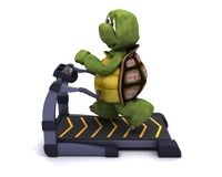 Tortoise running on a treadmill Stock Photos