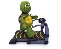 Tortoise running on a treadmill Stock Photo
