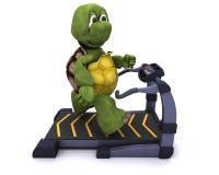 Tortoise running on a treadmill. 3D Render of a Tortoise running on treadmill Stock Photo