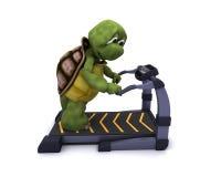 Tortoise running on a treadmill. 3D Render of a Tortoise running on treadmill Stock Images