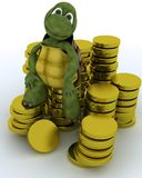 Tortoise sat on gold coins Stock Photos