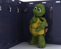 Tortoise with school locker Stock Images