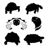 Tortoise set vector. Tortoise set of silhouettes vector stock illustration