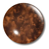 Tortoise Shell Button Orb Royalty Free Stock Image