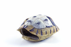 Tortoise shell. Tortoise kaplumbağa  shell  nature turtle Royalty Free Stock Photography