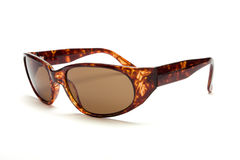 Tortoise Shell Sunglasses Royalty Free Stock Image