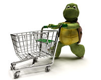 Tortoise with a shopping cart Stock Photography