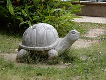 Tortoise statua fotografia royalty free