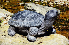 Tortoise Statue. A tortoise statue by a small river and rocks Stock Image