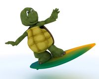 Tortoise with surf board Royalty Free Stock Images