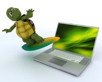 Tortoise with surf board and laptop Stock Images