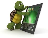 Tortoise with tablet PC Royalty Free Stock Image