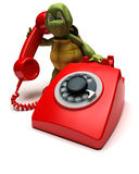 Tortoise with a telephone Stock Images