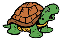 Tortoise / Turtle. A cartoon tortoise or turtle in his shell Royalty Free Stock Photography