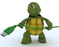 Tortoise with a usb cable Stock Image