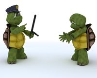 Tortoises as cops and robbers Royalty Free Stock Photo