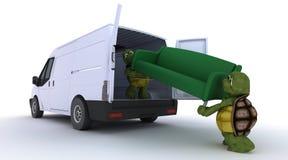 Tortoises loading a sofa into a van Stock Photography