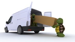 Tortoises loading a van Royalty Free Stock Photo