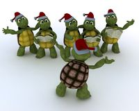 Tortoises singing christmas carols Royalty Free Stock Images