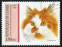 Tortoiseshell. GUINEA - CIRCA 1995:   stamp printed by Guinea,  shows Tortoiseshell, circa 1995 royalty free stock images