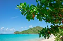 Tortola, Îles Vierges britanniques photographie stock libre de droits