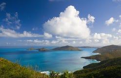 Tortola foto de archivo libre de regalías